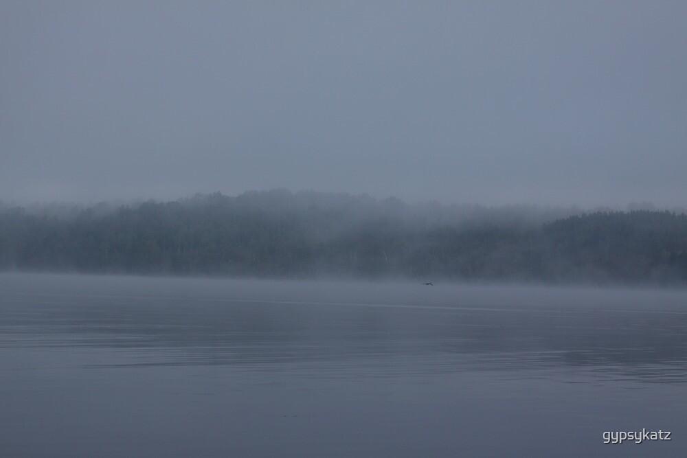 Foggy Morning Fishing  #10 by gypsykatz