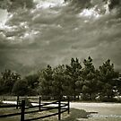 Calm before the storm in Springtown, TX by David Owens