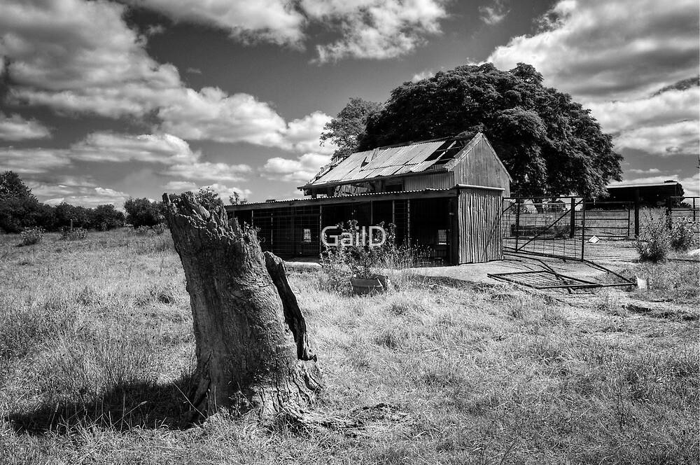 Oxton Park by GailD