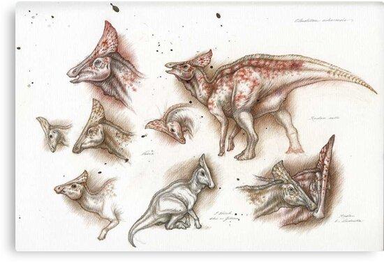Olorotitan Studies by Himmapaan