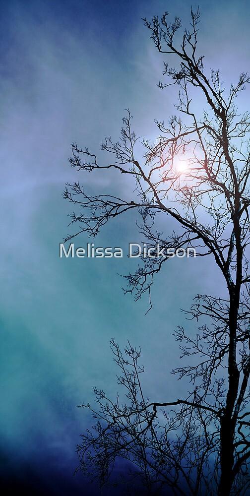 Nightfall  by Melissa Dickson