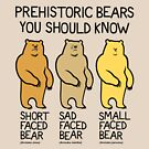 Prehistoric Bears You Should Know by David Orr