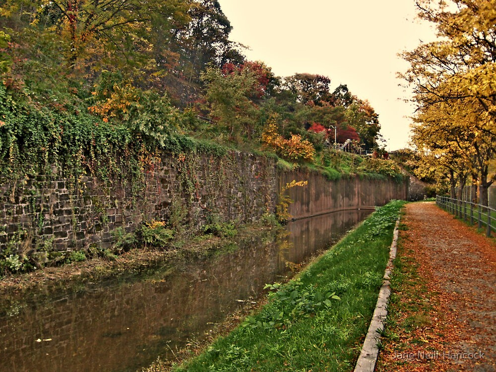 Hidden Canal in the middle of the city of Paterson NJ - photo 2 by Jane Neill-Hancock