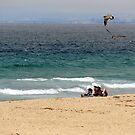 Any Given Thursday Seaside, CA by Sandra Gray