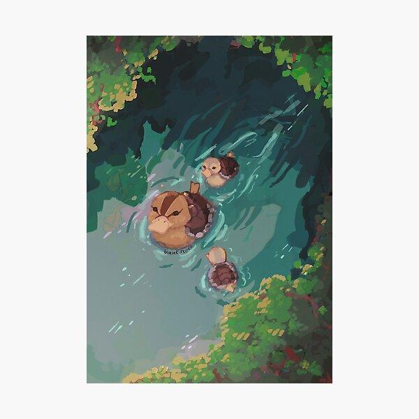 turtle duck pond avatar the last airbender Photographic Print