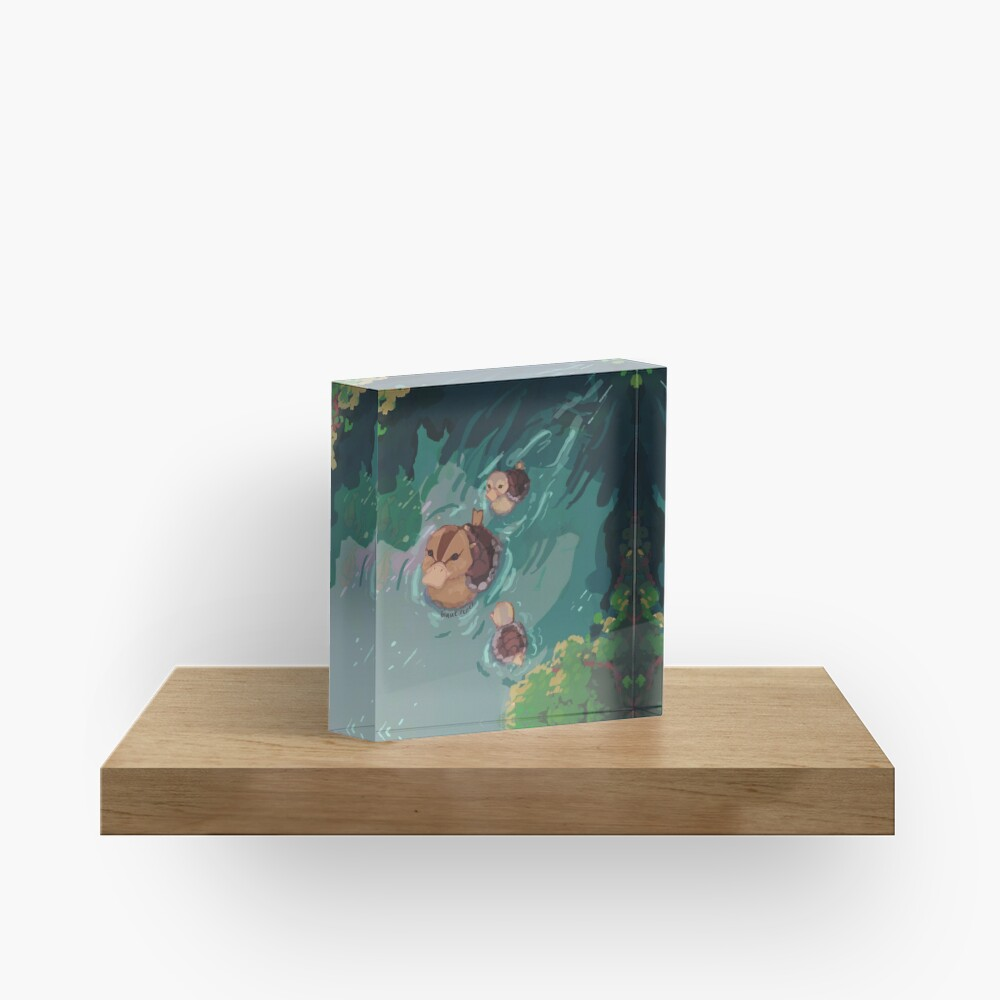 turtle duck pond avatar the last airbender Acrylic Block