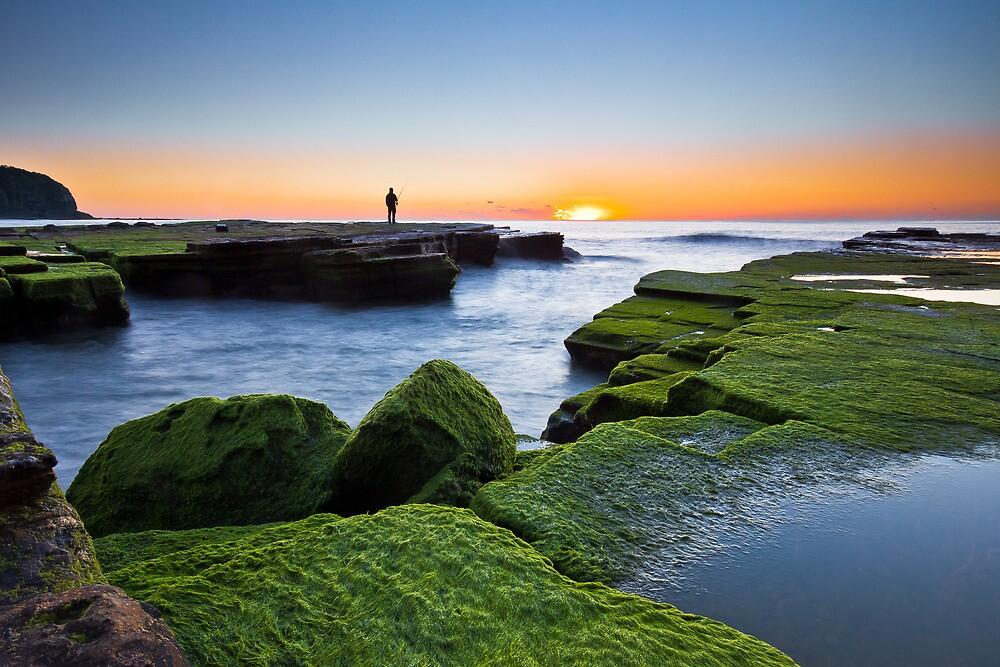 Green - Turimetta Beach NSW by Andrew Kerr