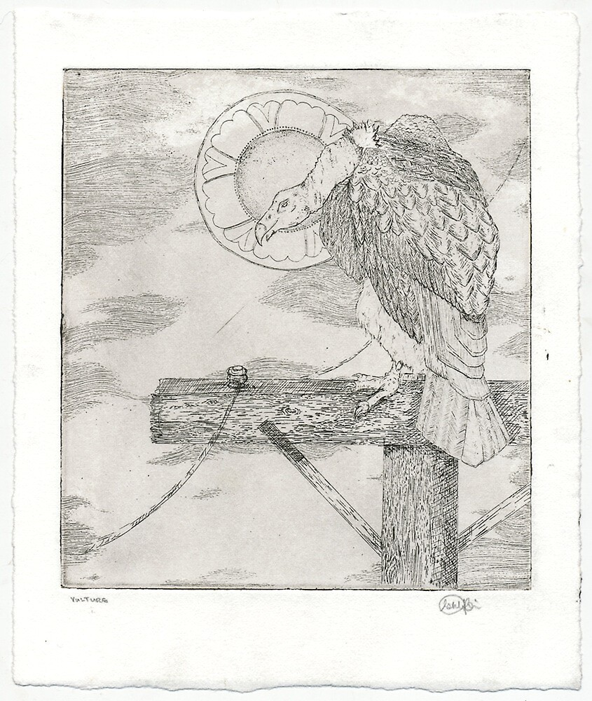 Vulture Etching (Intaglio) by Ashly Bohinc by SharksEatMeat