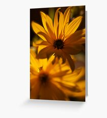 Yellow art. by Brown Sugar. was featured in A Place To Call Home !  BRINKS JOY TO ME !  Buy what you like!  Thx!  Views 86 Thx! Greeting Card