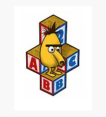 ABC-Bert Photographic Print