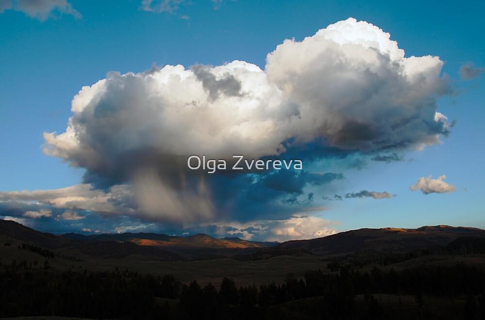 Storm is Coming by Olga Zvereva