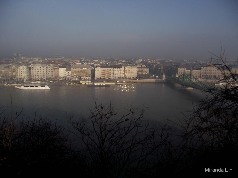Pest from Buda by Miranda L F