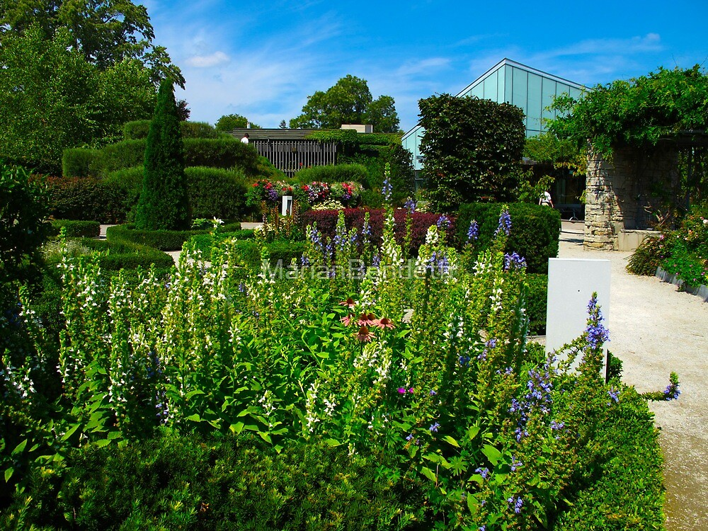 Toronto Botanical Gardens by MarianBendeth