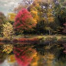Autumn's Mirror by Jessica Jenney