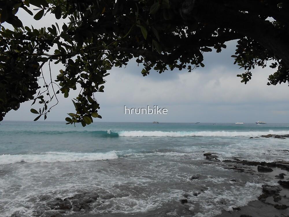 Enjoying The View by hrunbike