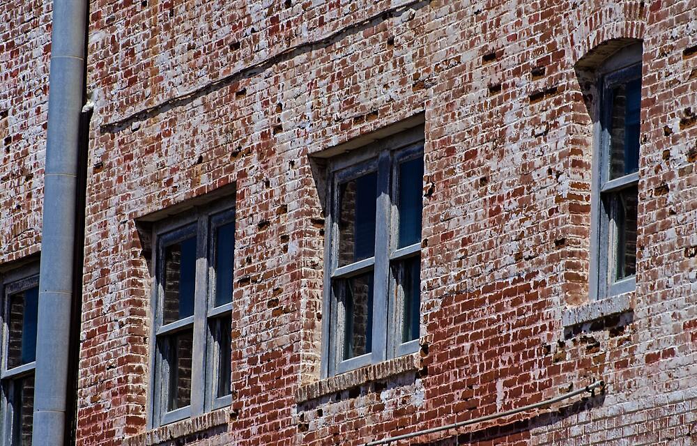 Bricks and Windows by photojeanic