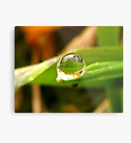 A Drop For YOU Dedicated to My Love, My Husband~ Metal Print