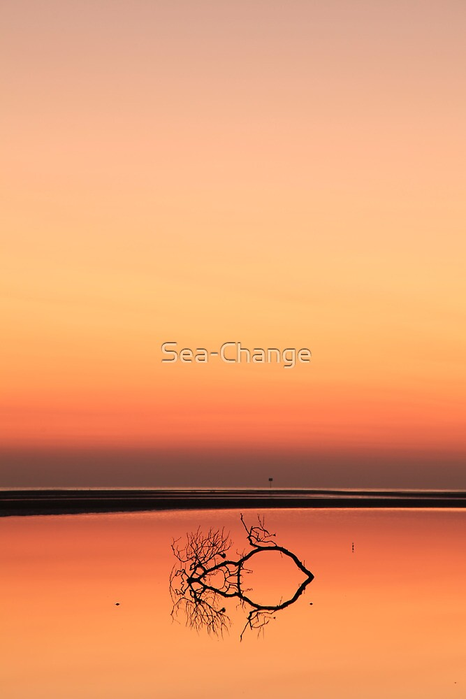 Before the Sun Rose by Sea-Change
