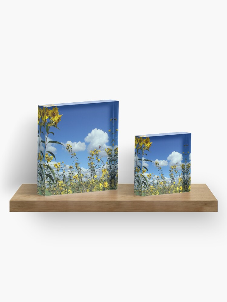 Alternate view of Tickseed and Monarch Acrylic Block