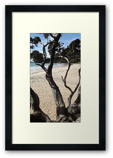 View from a tree - Langs Beach by amypie71