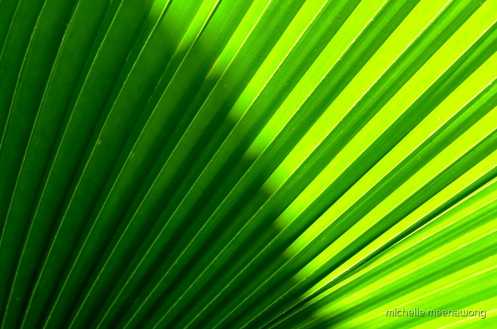 simply green by michelle meenawong