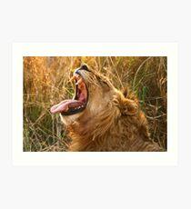 Piajo Male Yawning Art Print