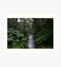 Aire River - Wide Angle Art Print