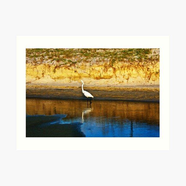 Egret at Low Tide Art Print