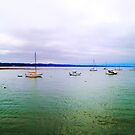Boats in Capitola by fairwood63