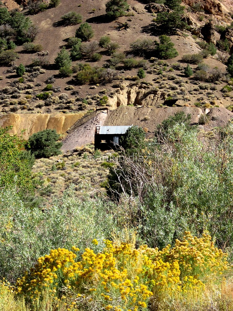 The Mine On The Hill by marilyn diaz