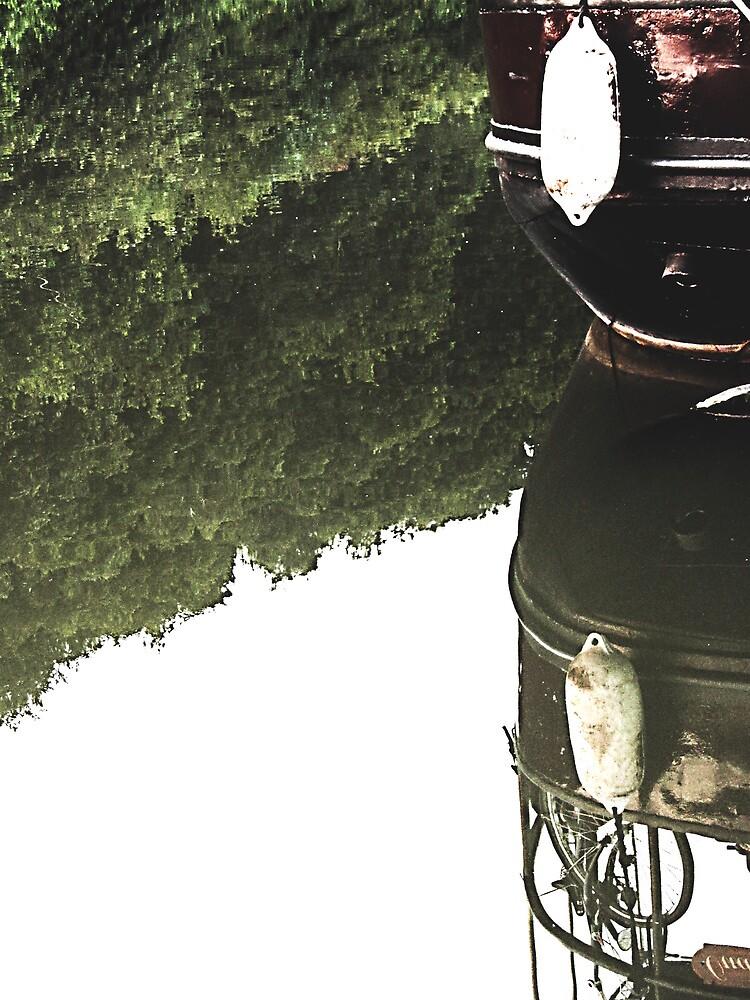Reflection by cheryfayre