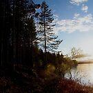 Sunset by cheryfayre