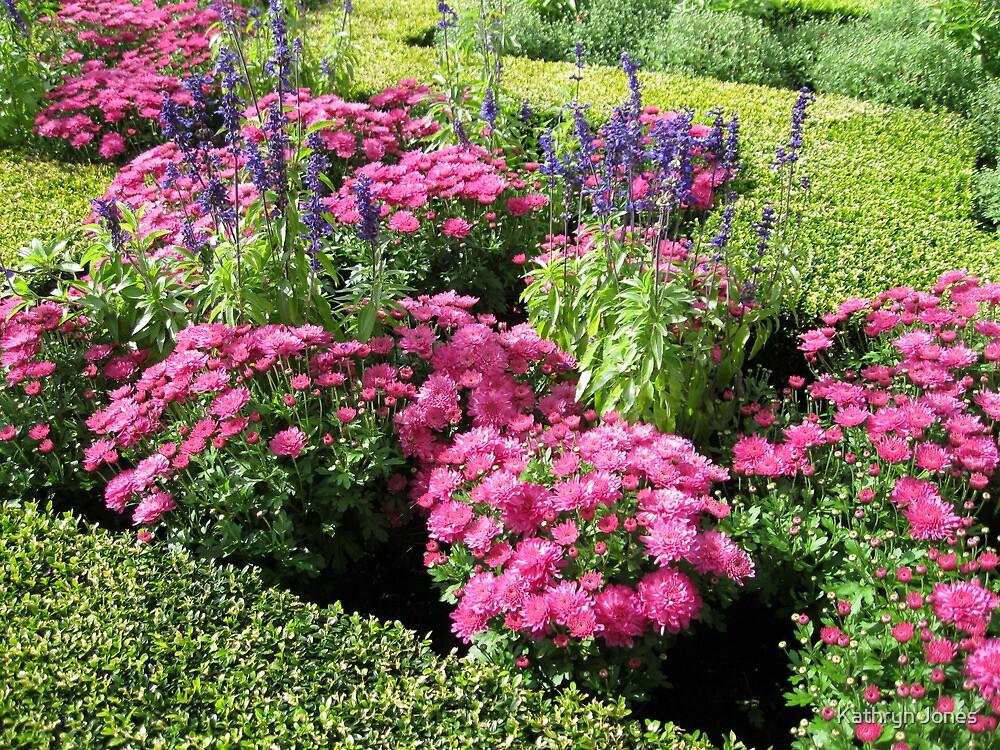 Stunning Pink Flowers in a Little Maze by Kathryn Jones