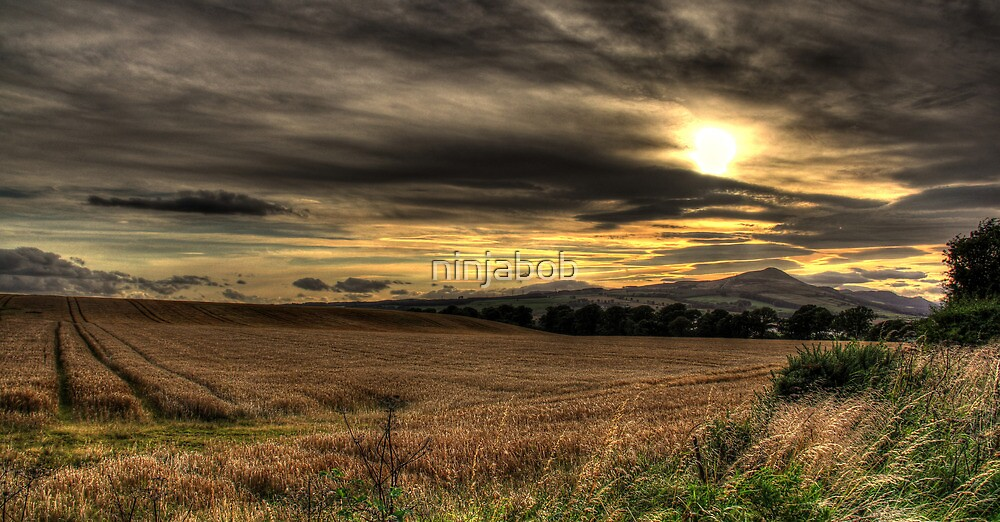 The Hill,From Muirhead..HDR. by ninjabob