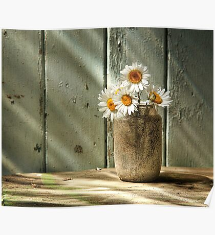 A Jar of Daisies Poster