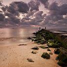Moments Before Sunrise by Yelena Rozov