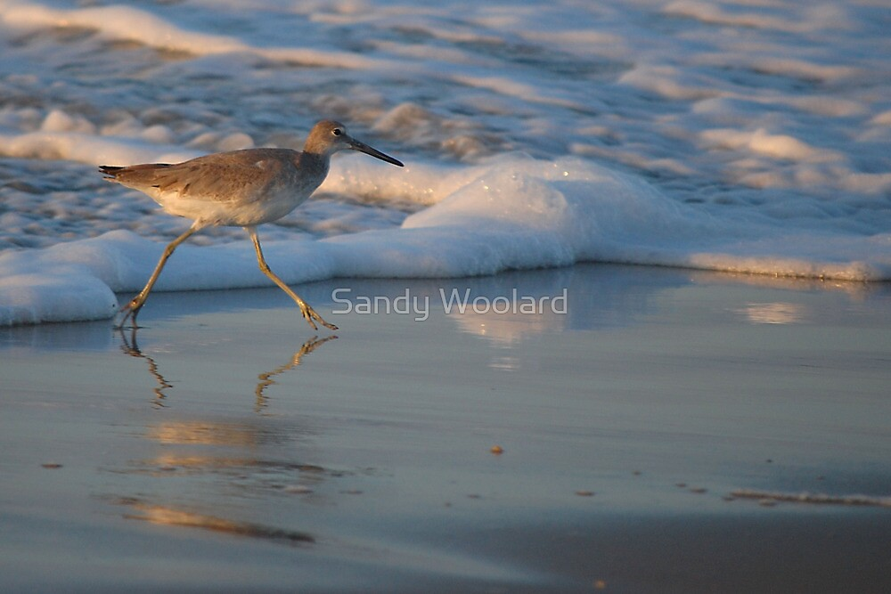 No Time to say Hello, Good-Bye! by Sandy Woolard