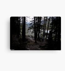 Goldrush Cemetary Canvas Print