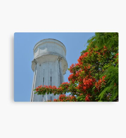 Water Tower in Nassau, The Bahamas Canvas Print