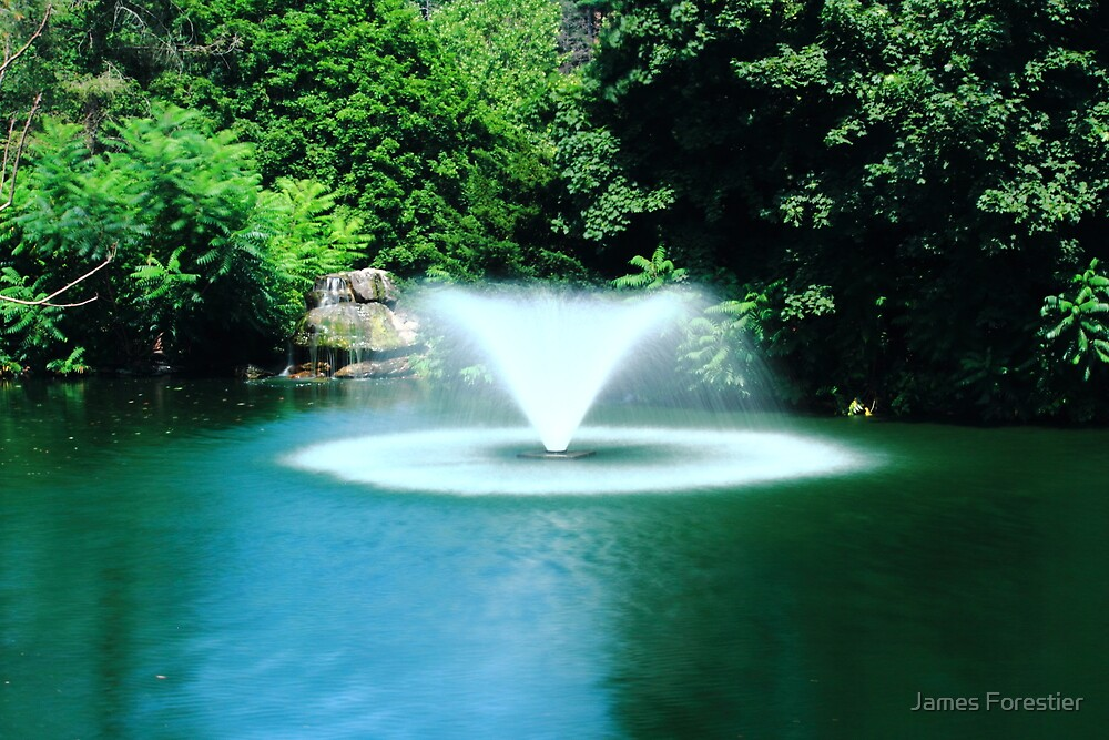 Fountain of Light by James Forestier
