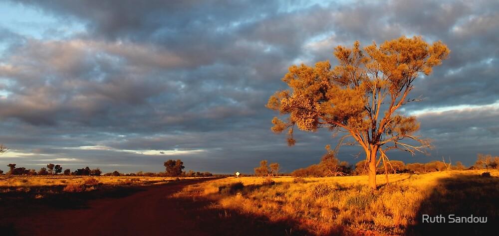 Outback sunrise by Ruth Sandow