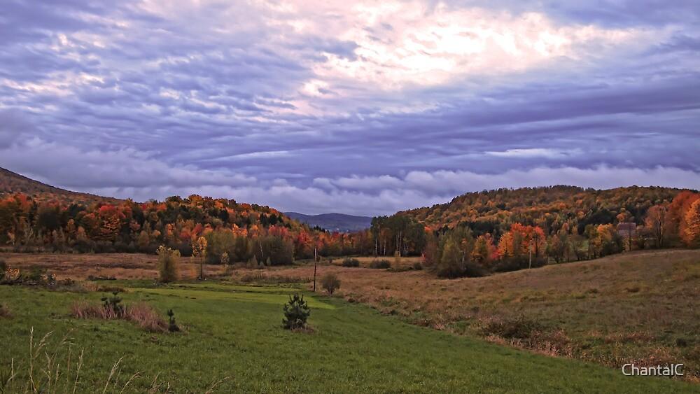 Fall Landscape under a Purple Twilight Sky by Chantal PhotoPix
