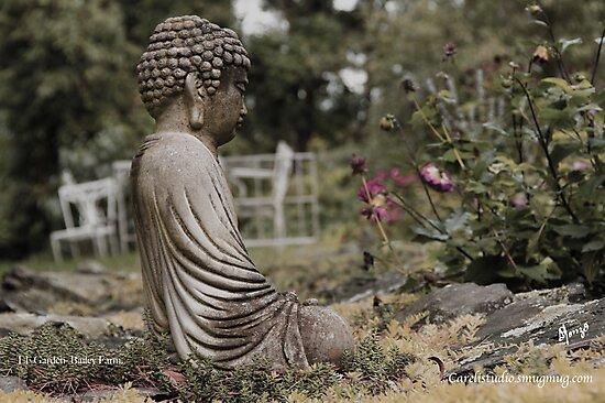 Meditation by alocarlos