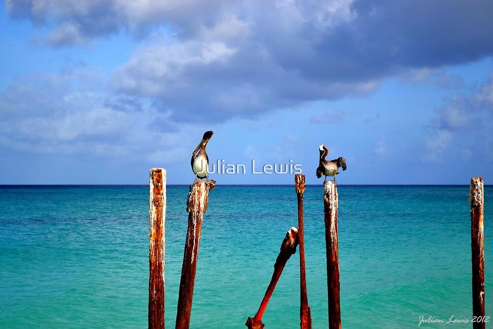 Aruba #1 by Julian Lewis