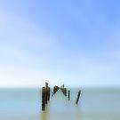 Old Pier  by Glenda Williams