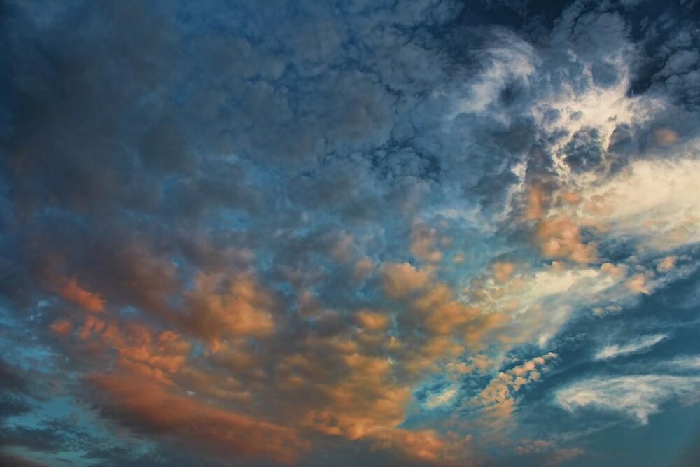 Cloud 20120825-30 by Carolyn  Fletcher