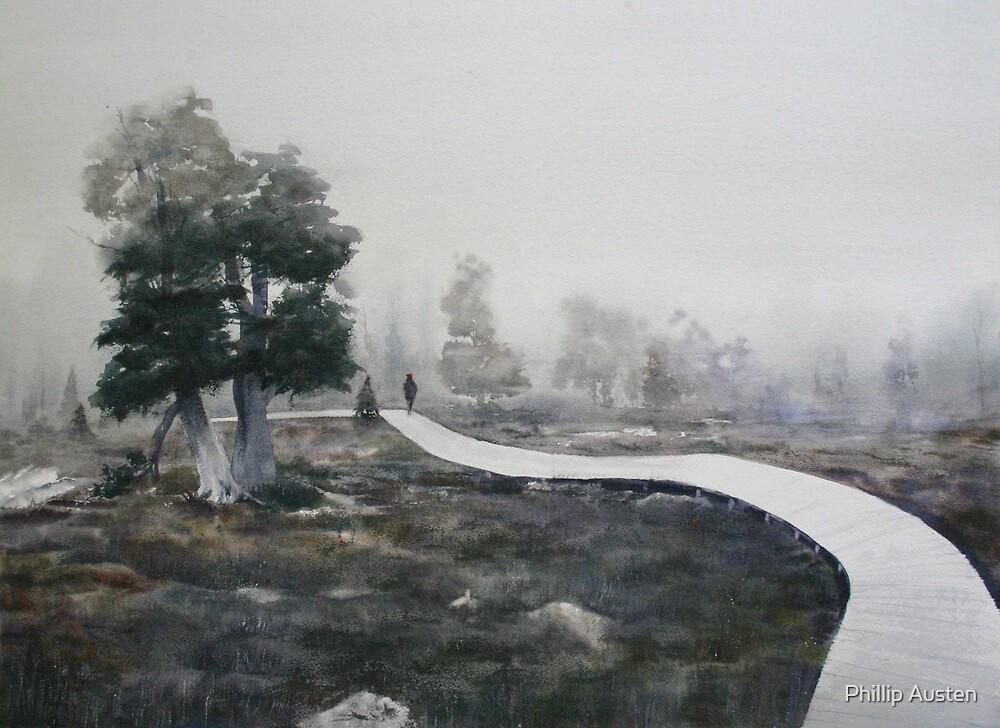 Pines in the Mist- Pine Lake Tasmanian Highlands by Phillip Austen