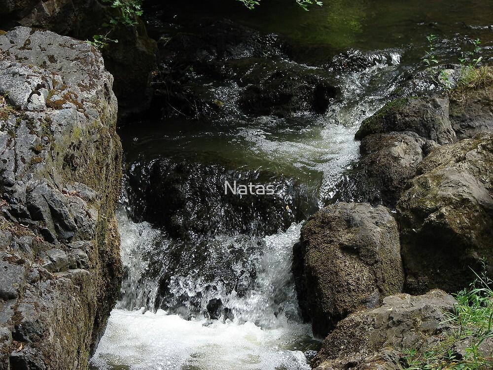 "Nature Reserve ""Wild Sarka"" IV. - Sarka stream II. by Natas"