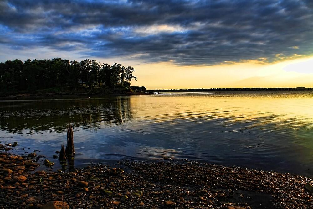 Rocky Shoreline At Dusk by Carolyn  Fletcher