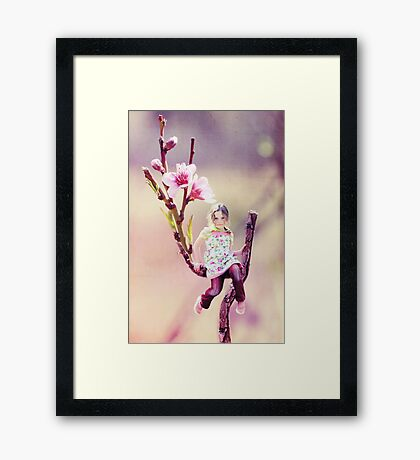 Darling Buds of May Framed Print